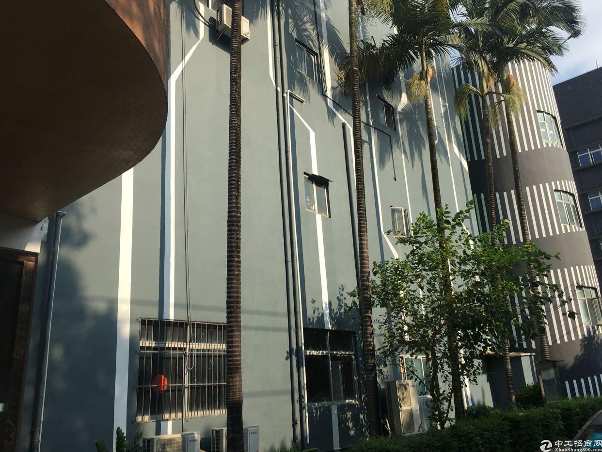 福永新和福州大道旁豪华装修厂房1500平有地坪漆吊顶