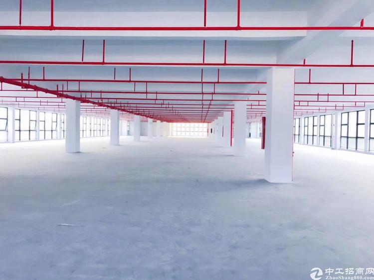 龙岗坪地32000独栋高新园区-图2