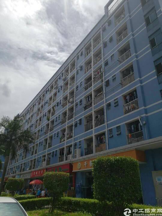 西乡固戍大门107国道边上新出楼上整层3500平米出租可分租