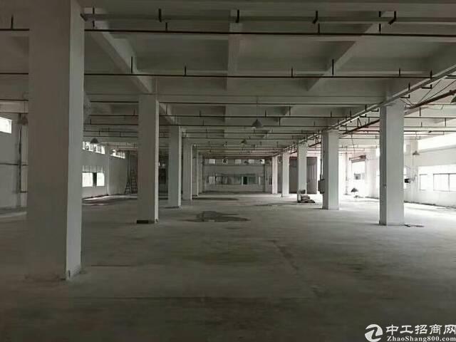 西乡洲石路靠鹤洲工业区1760平带装修厂房招租,大小可分租-图9
