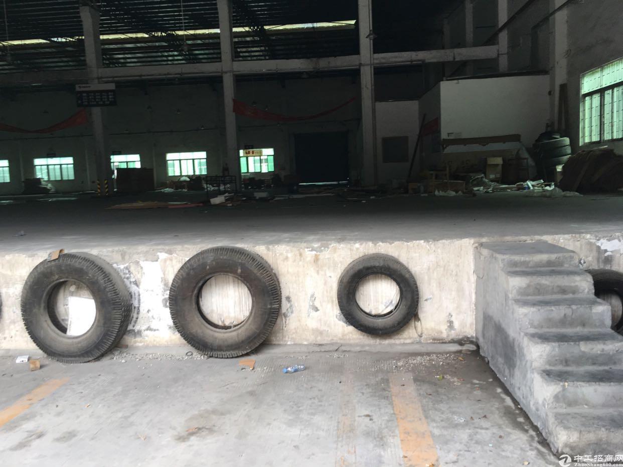 九围地区钢构厂房2800平适合仓储物流