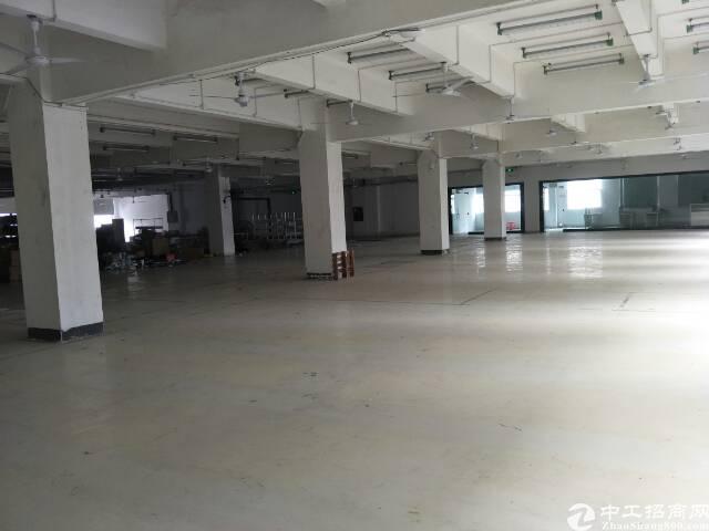 南山西丽楼上900平方厂房出租 适合仓库