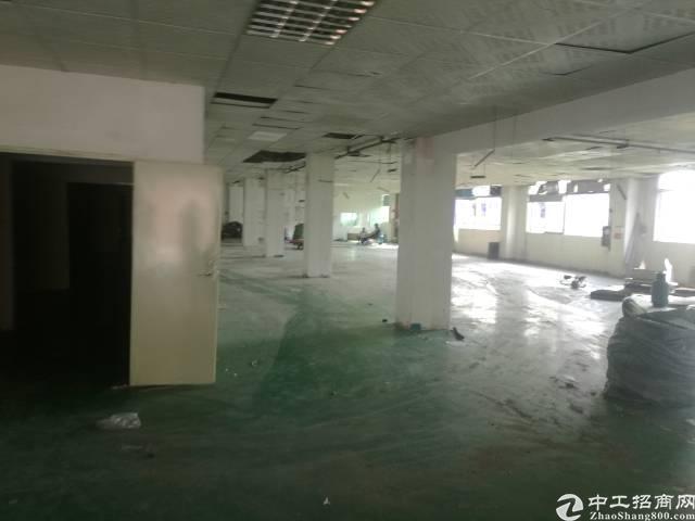 福永 凤凰3楼厂房1350平方带装修不要转让费