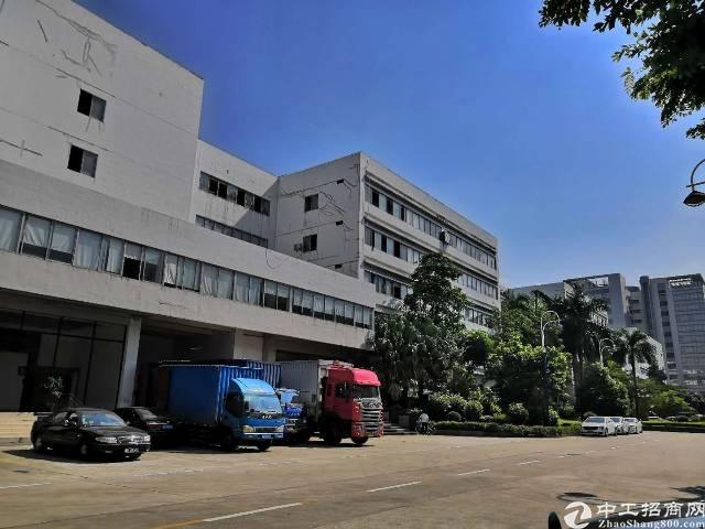 原房东一楼8米高厂房价格35块红本面积3800平