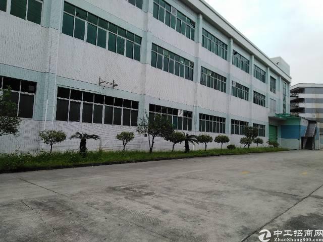 万江区新出大型工业园厂房出租,现成消防喷淋,带地坪漆