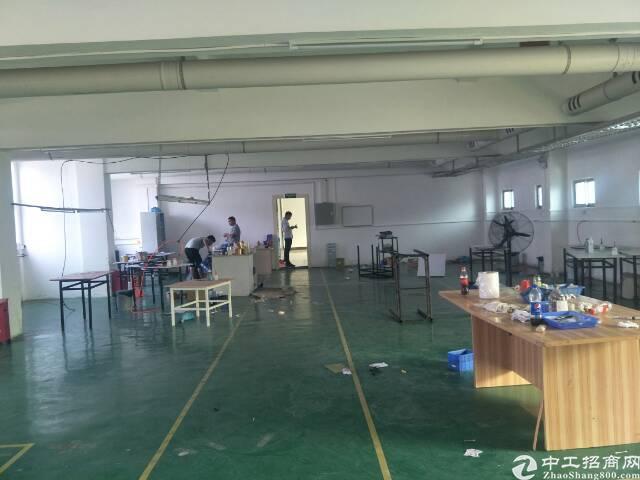 寮步镇花园式独院厂房招租560平米