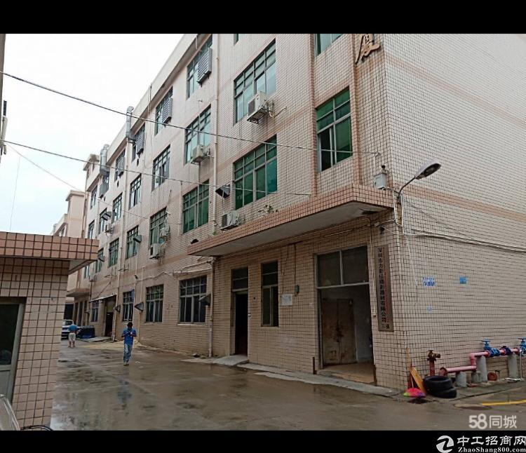 平湖新出一楼有装修厂房650平出租