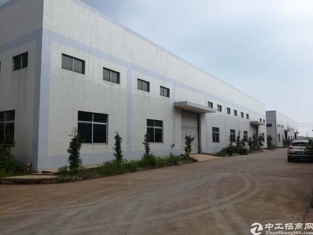 惠州杨村泰美新出砖墙到顶钢结构厂房出租