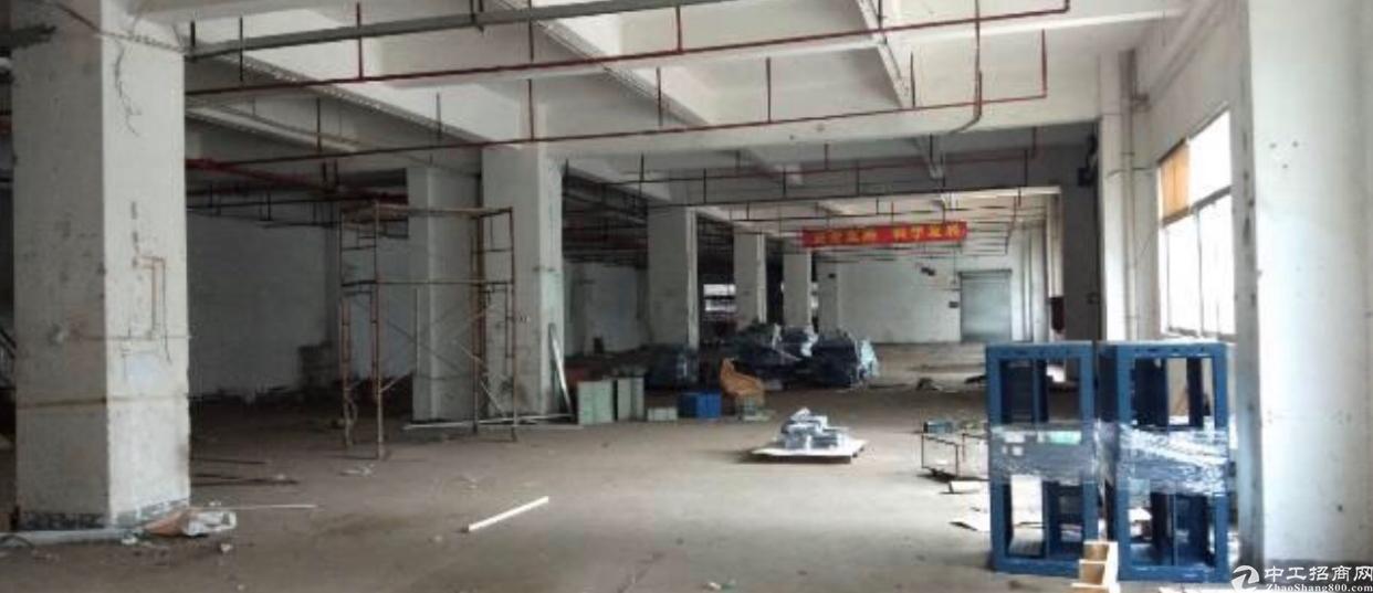 龙岗区坂田杨美地铁口附近新出一楼层高5.5米2540平可分租