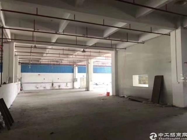 博罗湖镇独门独院厂房一楼1300平招租