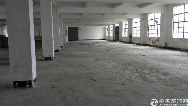 一楼800平厂房招租,可分租,独门独院空地大,适合各种行业