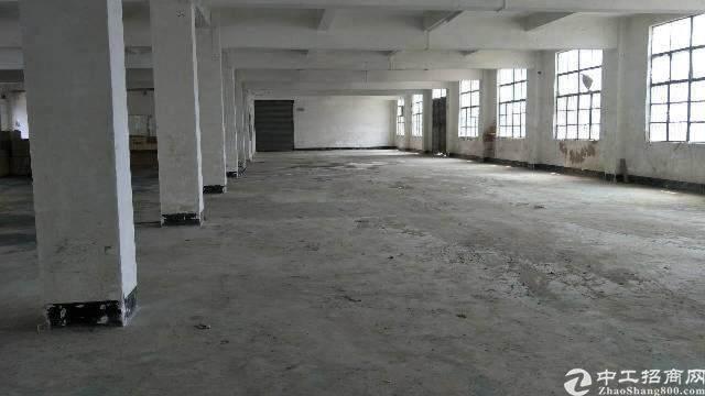 平湖新出工业园带红本600平米厂房招租,可分租,已过消防!