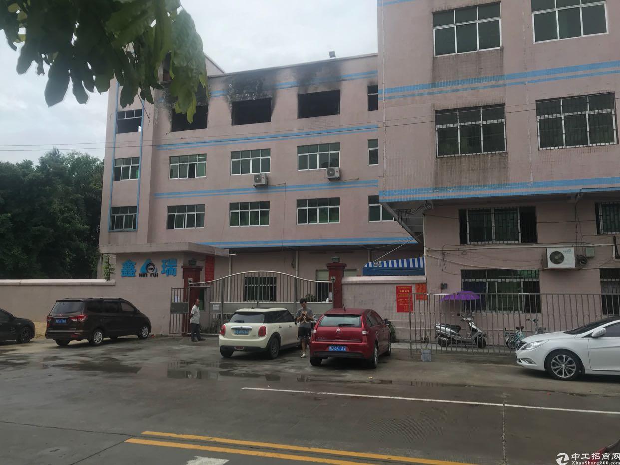 东莞市国有证6500平方厂房出售