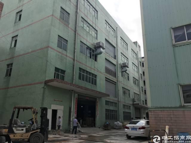 龙岗唯一带大独栋钢构厂房的独门独院-图2