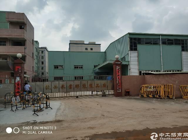 龙岗唯一带大独栋钢构厂房的独门独院-图3