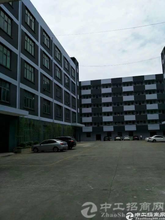厚街镇白濠村现有带精装修厂房500平米招租,无转让费