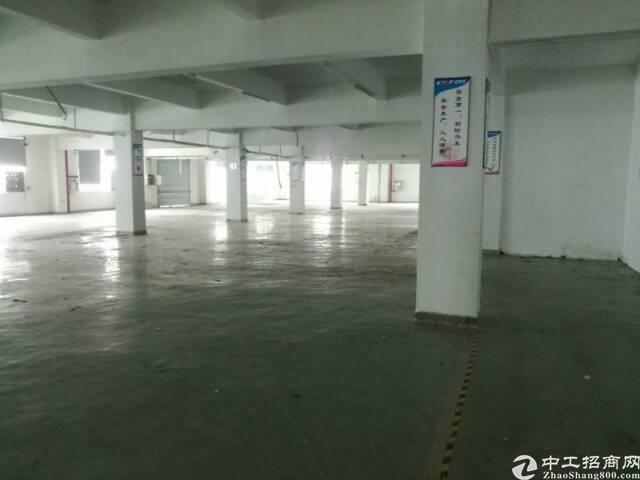 西乡洲石路靠鹤洲工业区1760平带装修厂房招租,大小可分租-图6