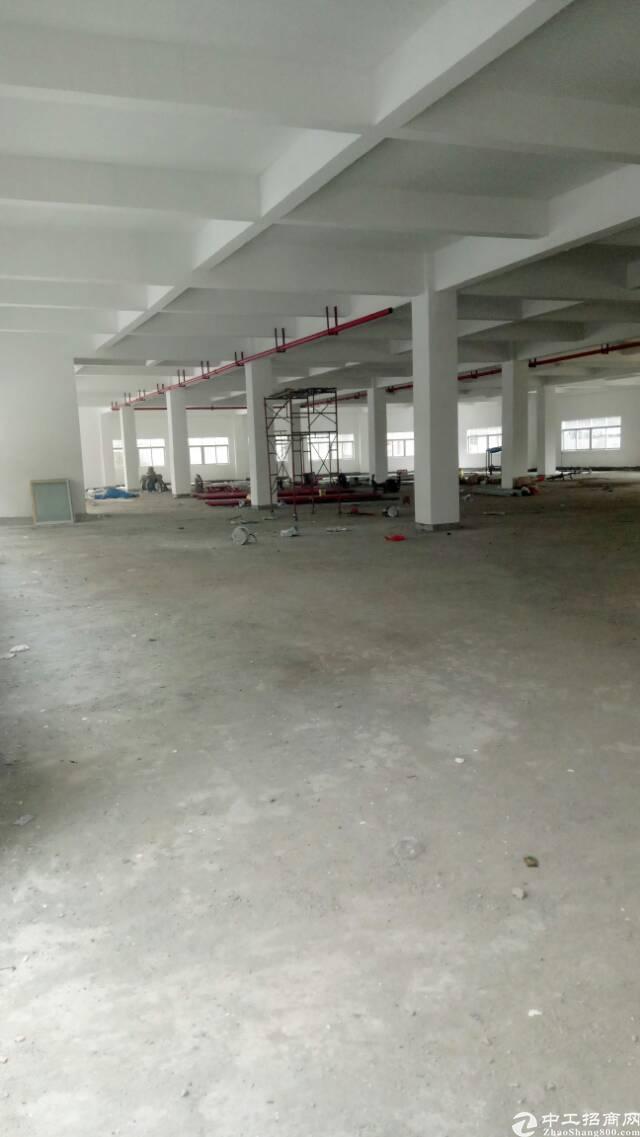 中堂靠近麻涌全新厂房