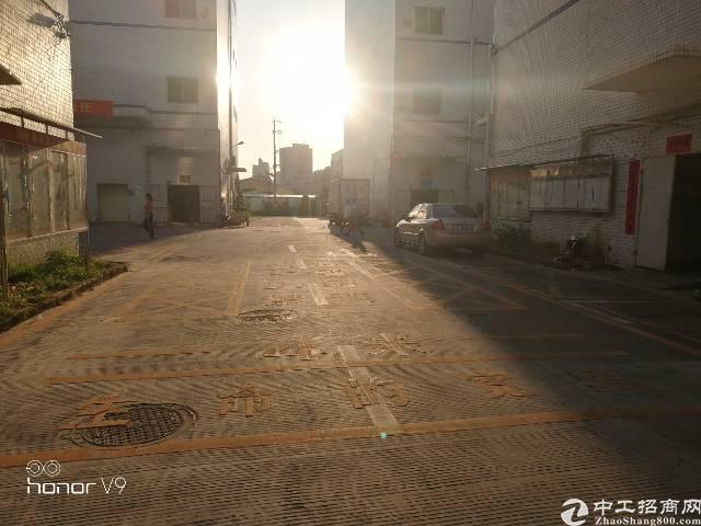 观澜清平高速口,新出整层2楼原房东实际面积出租厂房