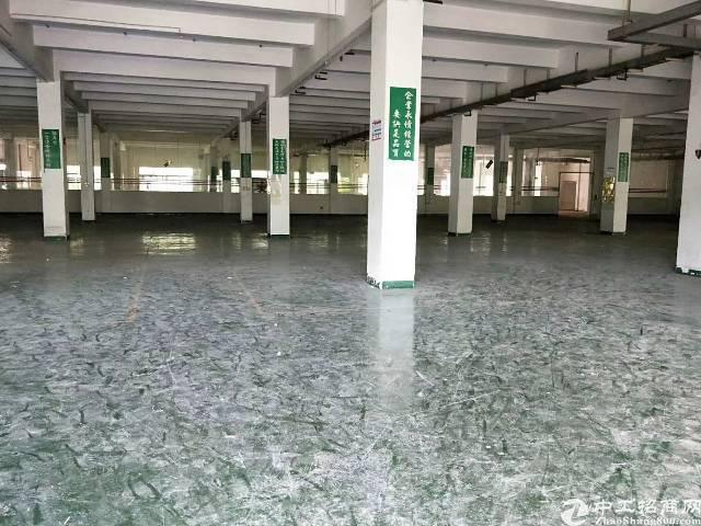 石湾本地房东4500平方独院厂房招租