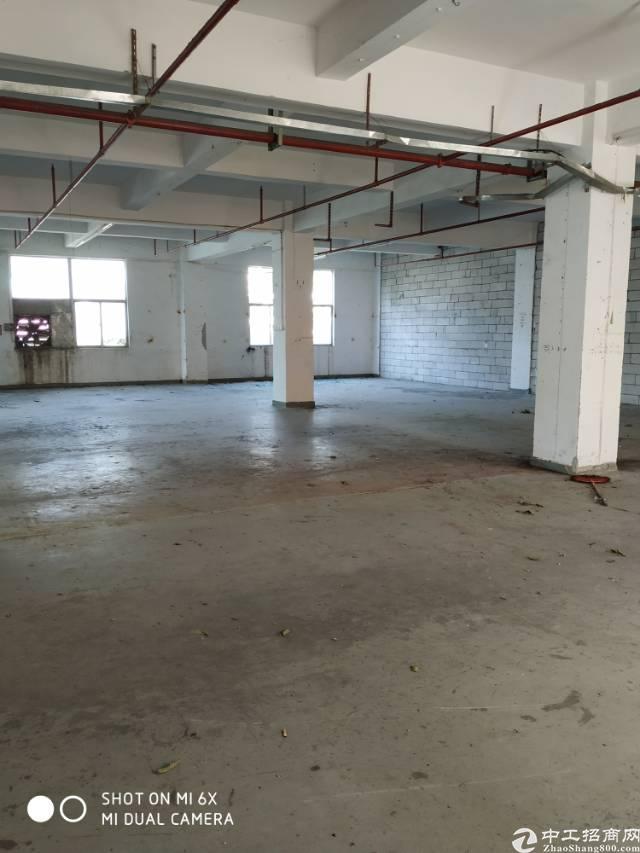 西乡共和工业路大型工业园630平标准厂房出租