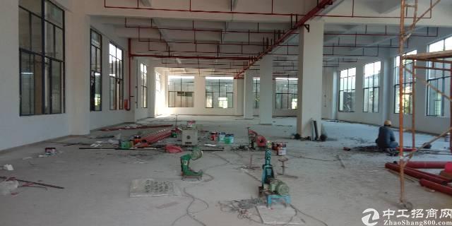 标准厂房一楼6米高