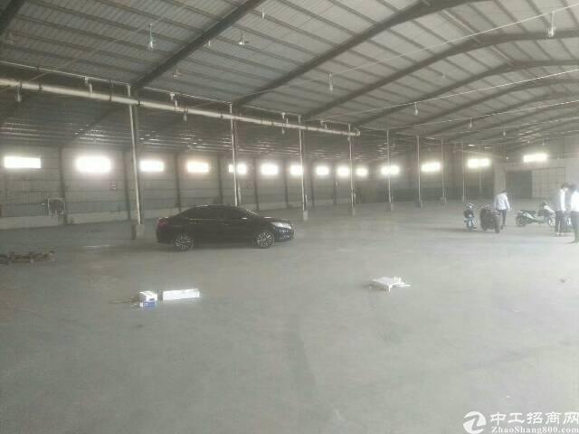观澜牛湖新出钢构现成阁楼办公室5330平方大小可分