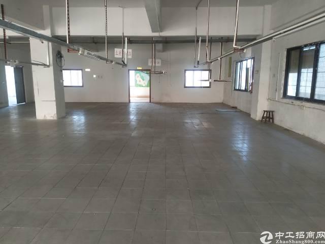 虎门原房东独院厂房出租面积4300平方报价16现在制衣线路