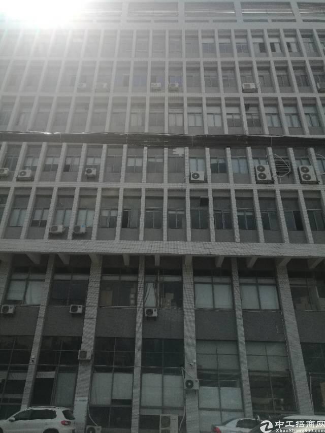 福永 凤凰4楼厂房出租1580平方带装修不要转让费