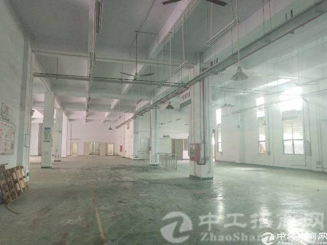 厚街镇博览大道附近现有原房东带精装修厂房500平米出租