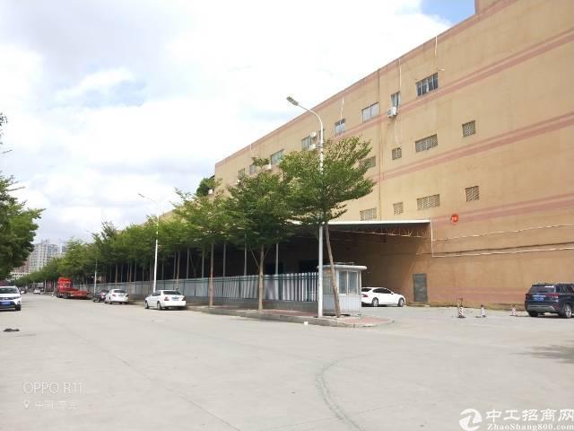 电商仓库超大3吨货梯3万平方大小分租
