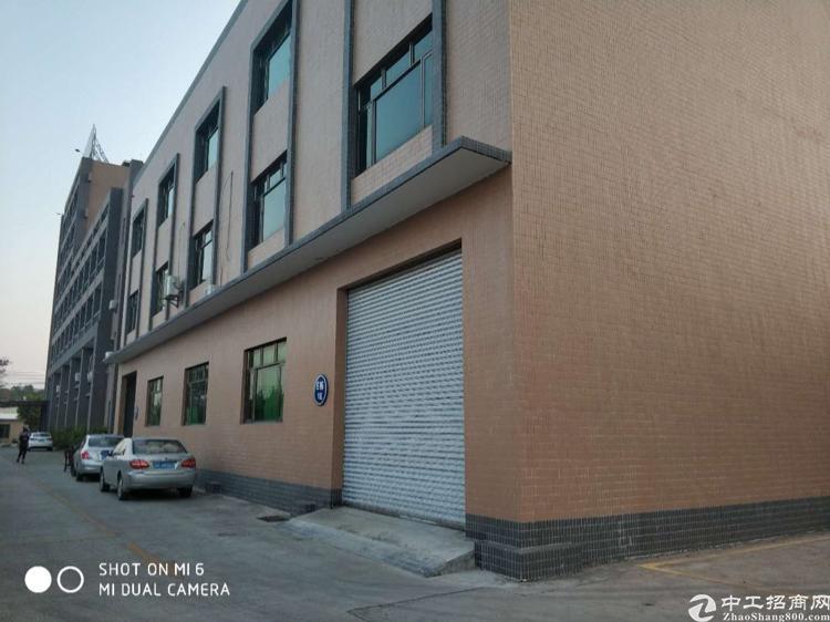 惠州市小金口新出工业园一楼2000平标准厂房出租