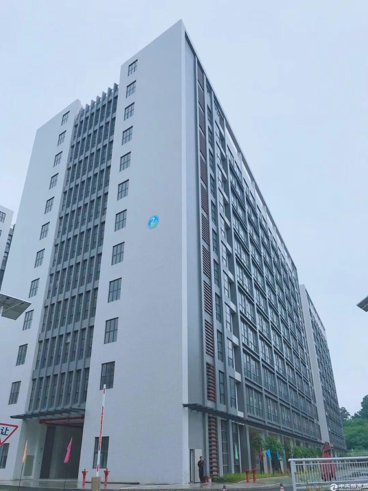 龙岗办公贸易淘宝电商仓库综合体800平米招租,可分
