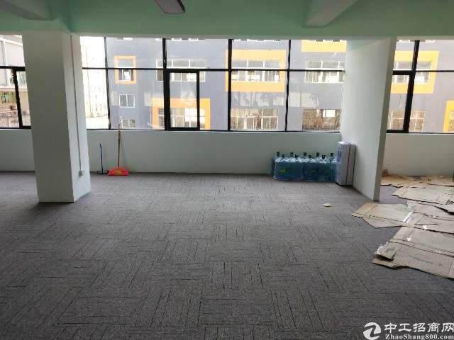 深圳龙华新区豪华写字楼出租图片5
