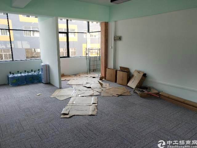 深圳龙华新区豪华写字楼出租图片3