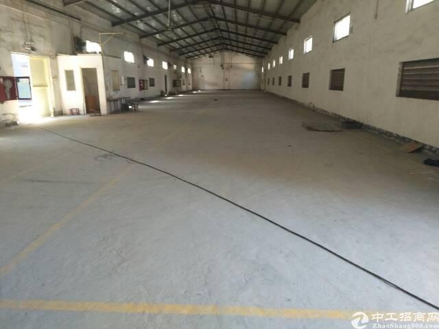 观澜牛湖新出钢结构厂房1200平方