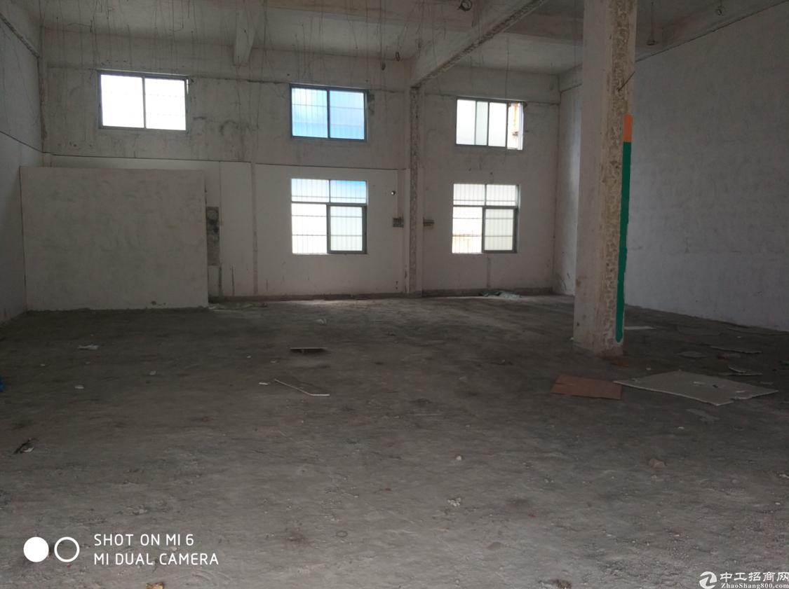 【石碣标准楼房一楼仓库,1200平米实际面积,只要16元/㎡