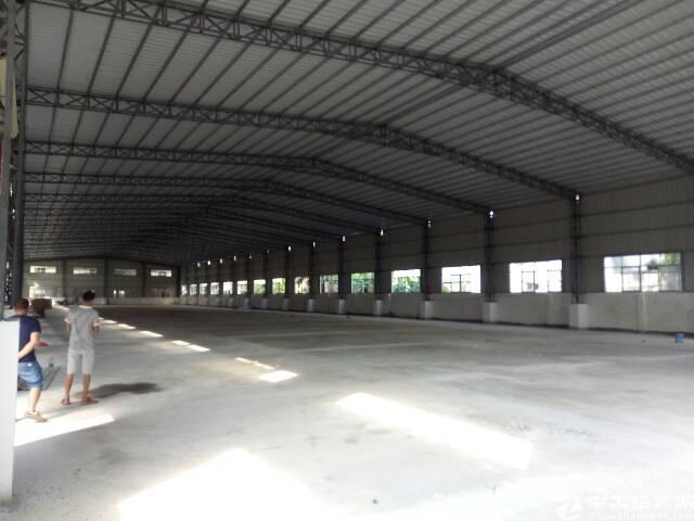 全新钢结构3680平方