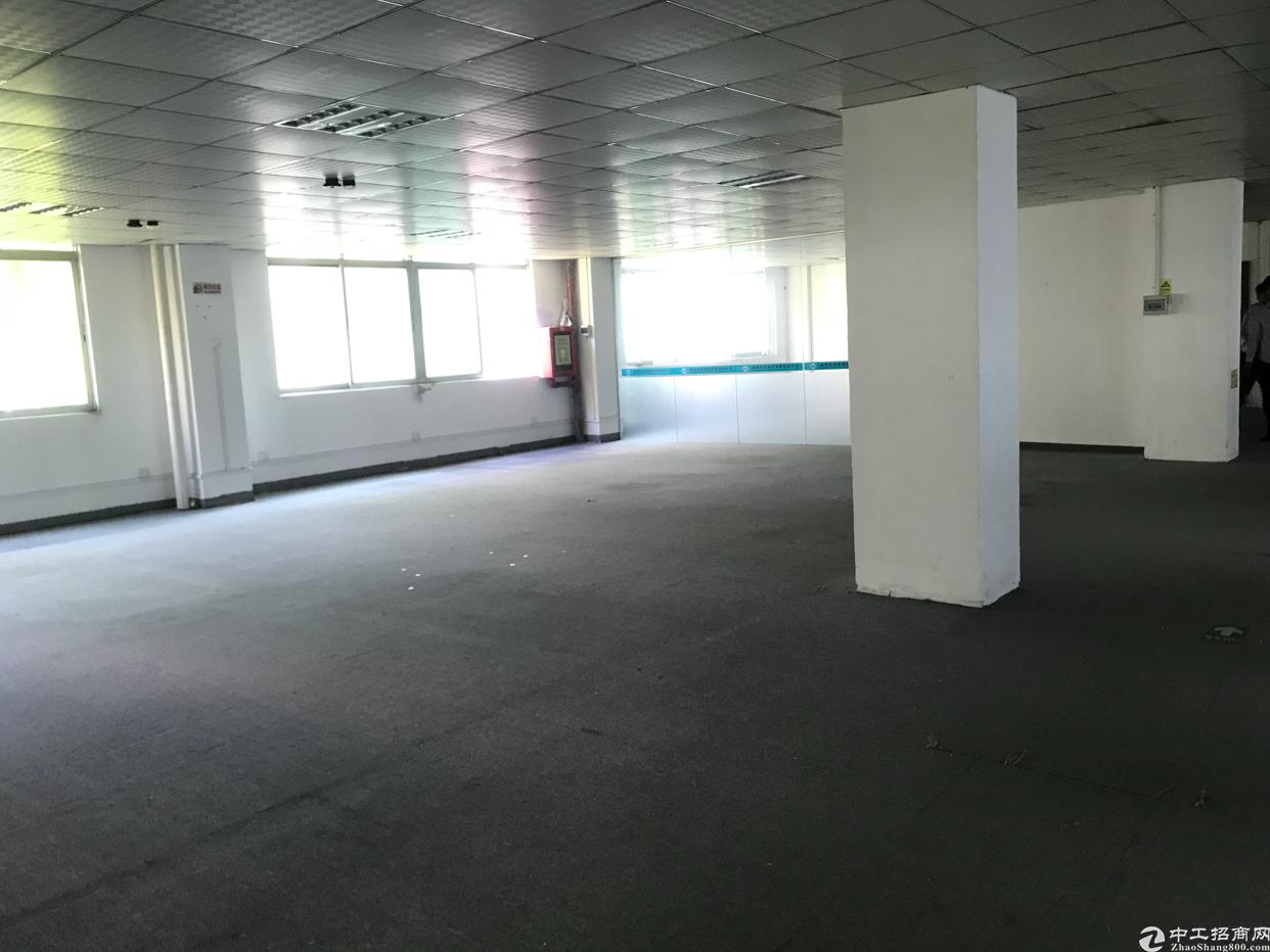 布吉本月新出厂房23元一平共700平,空地大,有宿舍食堂