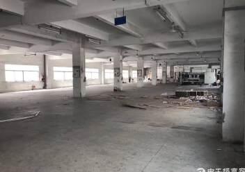 龙岗中心城附近标准厂房一楼1500平出租图片4