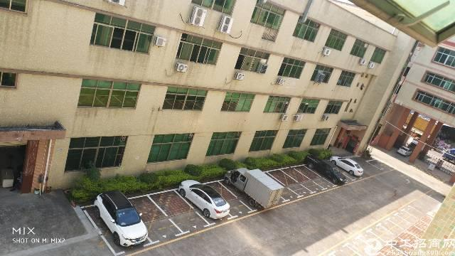 龙岗中心城附近标准厂房一楼1500平出租-图3