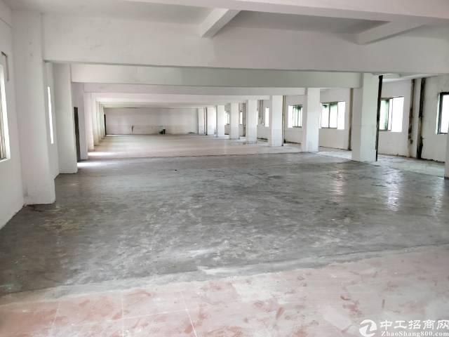 万江官桥滘附近出厂房