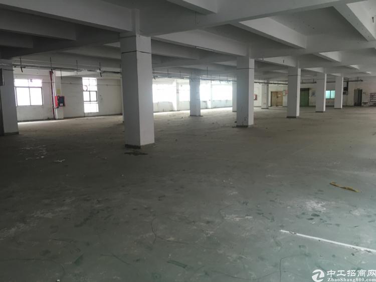 福永沿江高速出口原房东独门独院厂房1700平招租-图2
