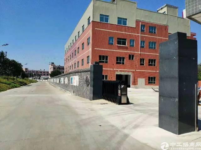 全新原房东独门独院标准厂房