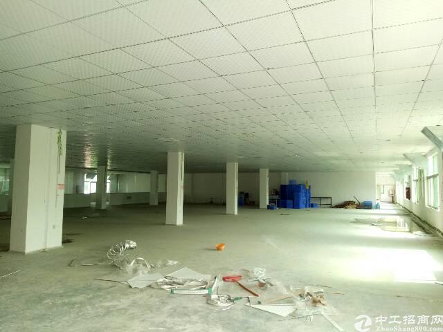坪山石井比亚迪路口新出二楼460平带装修厂房