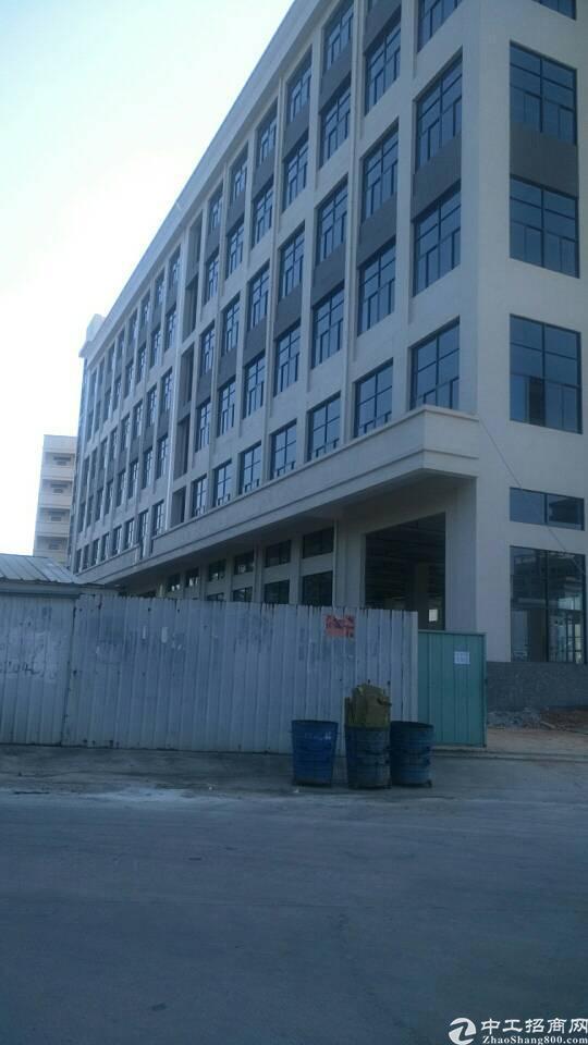 企石镇原房东标准厂房六层10000平方