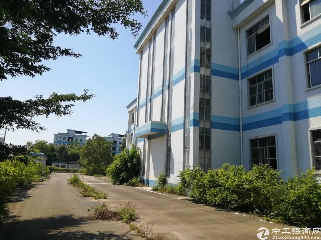 广东阳江两证齐全标准厂房出售