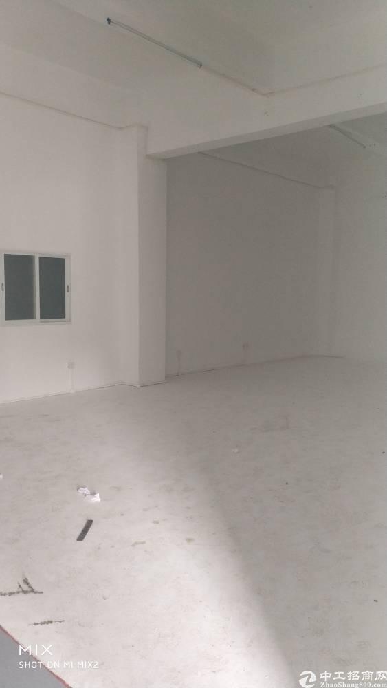 龙岗中心城附近南联标准厂房一楼700平出租-图2
