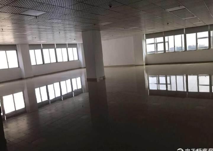 福永沿江高速出口会展中心写字楼精装修200平方图片5