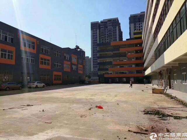 龙华清湖地铁口新出30000平方创客园招租可分租